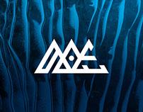 Branding | Ice Explorers