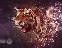 Apex Predator - Desktopography 2015