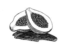 Natures Mortes (fruits exotiques)