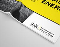 FLASH ENERGY.   Effective energy & renewable energy.