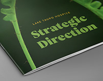 Lake Taupo Hospice | Strategic Direction Document