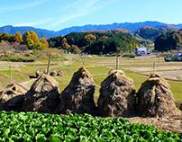 Nara countriside Japan