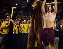 Real Fans of March Madness: The Curtain of Distraction