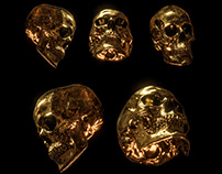 Billelis Skull Photo Stock Pack