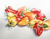 Sweet Peppers Study 1