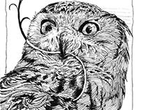 Drawing Bird_2