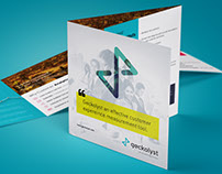 Geckolyst Brochure Design | Tecort Innovations