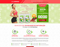 Landing Page design for a supplement company