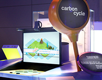 CARBON CYCLE AR EXPERIENCE