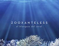 Zooxanteless