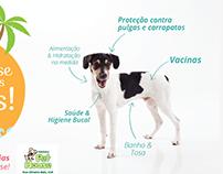 Pet house Belém - Visual Concept Campaigns