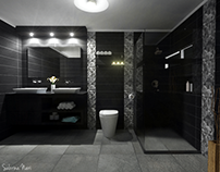 Modern black and silver bathroom