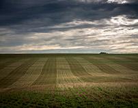 Rural Scenes