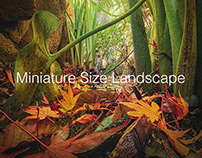 Miniature Size Landscape -season1-
