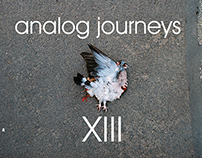 Analog Journeys XIII- ʃtʃɛ'tin