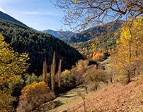 Vall de Ridolaina (Catalan Pyrenees)