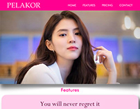 Pelakor Website Design