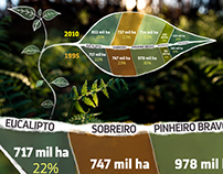 Infographics - Forests and Fires in Portugal