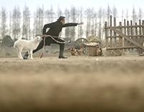 QS150214[晴狮出品] 出彩中国人第二季_周立波赶羊篇