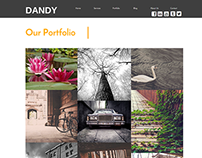 Dandy Photographers Website Concept