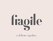 Fragile - A Delicate Typeface