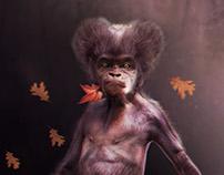 ((Billa ))Baby Gorilla