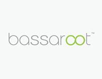 Bassaroot Logo Design