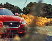 Jaguar XE S Pacific Northwest Road Trip