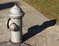 City Life: Fire Hydrants