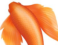 Vobo Design - Branding & Logo