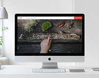 The Conservation Fund website concept