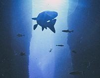 Underwater, fallen
