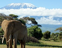 Top Attractions in Tanzania