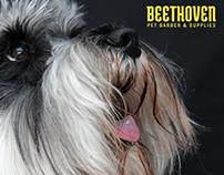 Beethoven PB&S