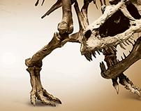 Exposição Dinossauros da Patagônia