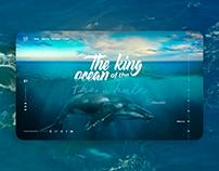 Whale - Interface Web