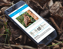InteractionDesign for generic Species Determination App