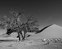 Namibia in black-and-white - Landscapes