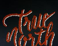 Hand-lettering — true north