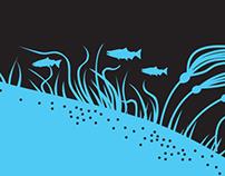 Seaweed Harvesting Brochure
