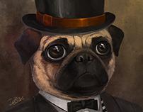 :: The Dapper Pug ::
