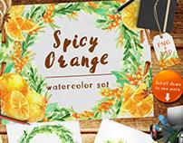 Spicy Orange Watercolor Set