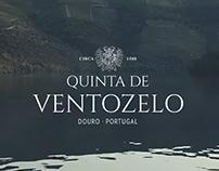 Quinta de Ventozelo - Web design