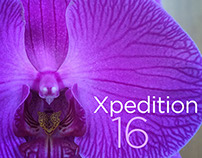 Xpedition Music Mix 16