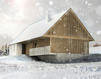 Cottage at Jizerské hory visualisations