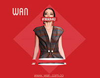 Brochure for WAN