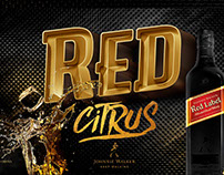 LINGUAGEM VISUAL // RED CITRUS®