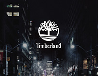 Timberland Authentic Youth Brand Book