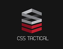 CSS Security C.I update