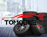 tomobile consption